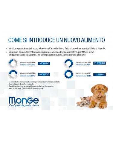 Monge All Breeds Puppy & Junior Salmone con Riso 800Gr